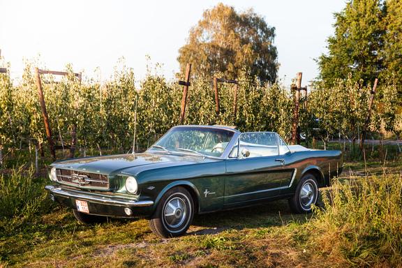 Oldtimerverhuur-wagen-Ford-Mustang-V8-Convertible-7.jpg