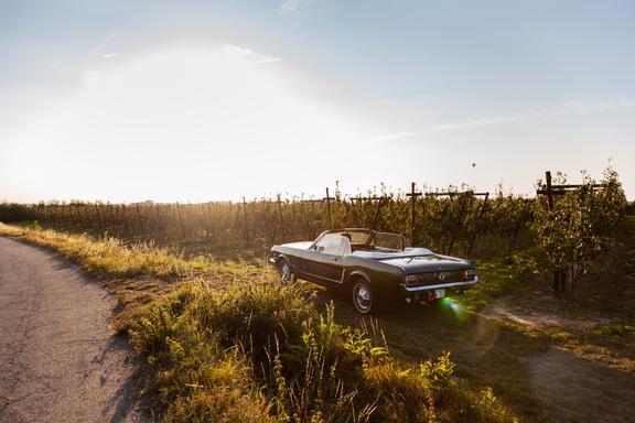 Oldtimerverhuur-wagen-Ford-Mustang-V8-Convertible-11.jpg