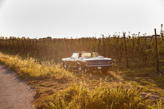 Oldtimerverhuur-wagen-Ford-Mustang-V8-Convertible-13.jpg