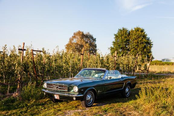 Oldtimerverhuur-wagen-Ford-Mustang-V8-Convertible-1.jpg