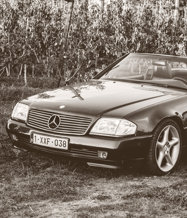 mercedes-250-SL-intro.jpg