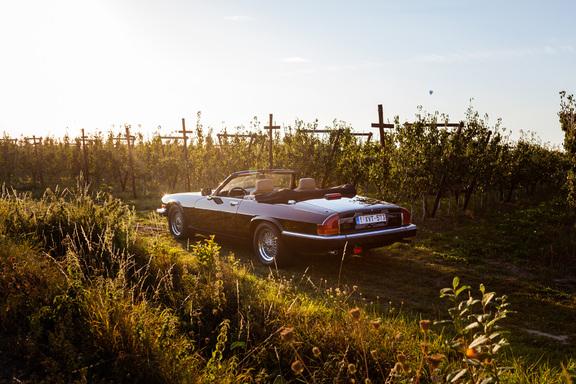 Oldtimerverhuur-wagen-jaguar-XJS-V12-convertible-3.jpg