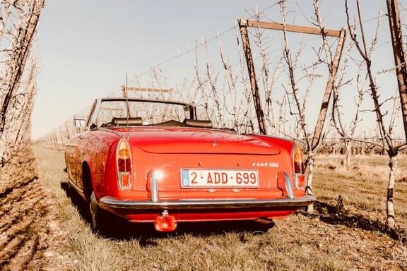 FiatSpider5.jpg