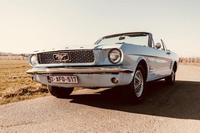 Mustangbl2.jpg