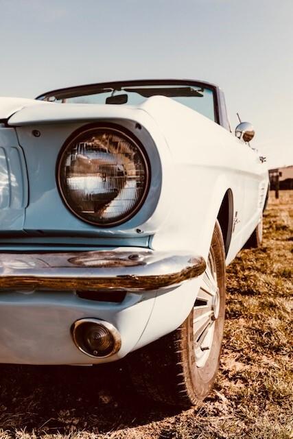 Mustangbl6.jpg