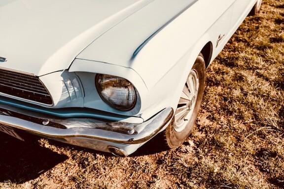 Mustangbl5.jpg