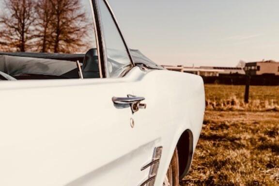 Mustangbl7.jpg