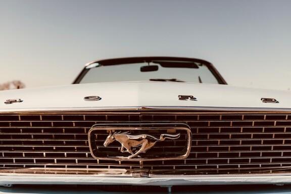 Mustangbl3.jpg