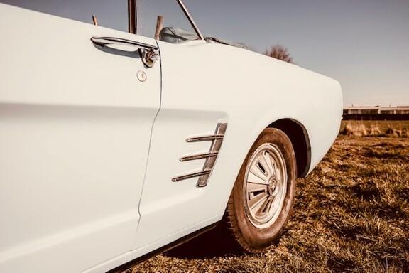 Mustangbl8.jpg