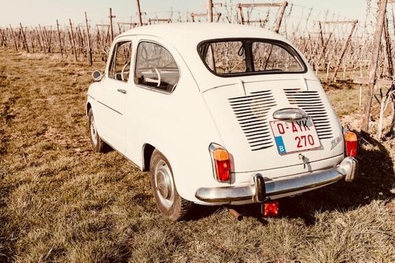 Seat6005.jpg